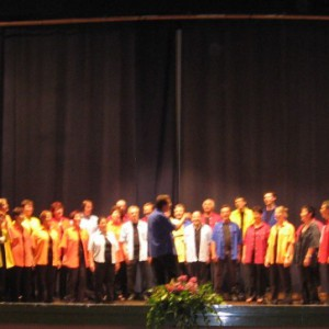Concert-a-Cesena-22.06.08-06-800x363