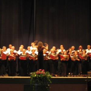 Concert-a-Cesena-22.06.08-10-800x524