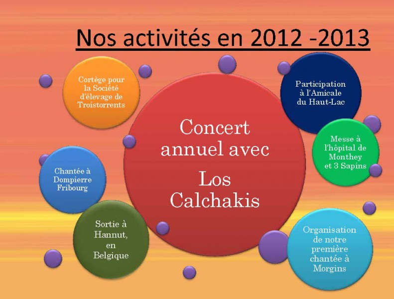 Nos-activites-2013_Page_1-791x600