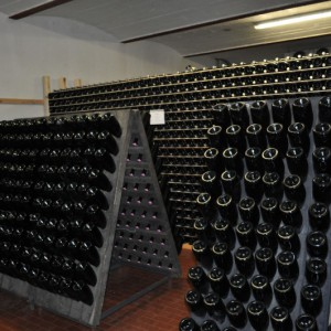 Visite-de-cave-a-Trento-Adige-2-800x531